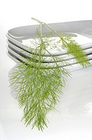fennel, saunf on glass bowl