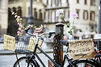 Bicycle with Pizzeria Signs and Flowers