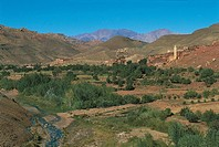 Morocco - The High Atlas - Temesnar Valley - Landscape