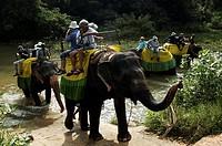 Harbarana, elephant safari for tourists