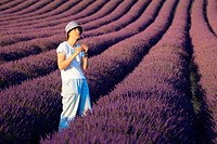 Lavender (Lavandula angustifolia), women standing in filed of Lavender, enjoying scent of Lavender, Vaucluse, Provence, France