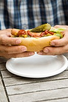 Man´s hands holding a hot dog