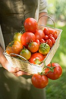 Woman holding basket of tomatoes various types