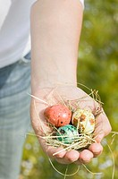 Hand holding coloured quails´ eggs on hay