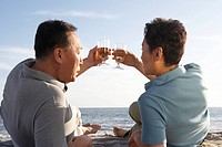 Mature couple toasting with champagne on beach, rear view