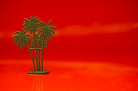 Toy green plastic palm tree on a red background
