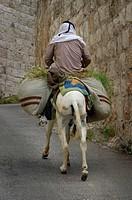 Palestine, man, with, Donkey, Mount, of, Olives, Jerusalem, Israel