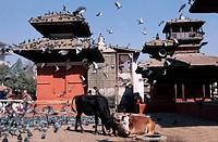 Nepal, Kathmandu, Durbar square, Jagannath temple