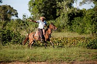 Pantanal Cowboy,Pantaneiro,Horse,Pantaneiro Horse,Pantanal,Brazil,riding,driving,lash on,horsewhip