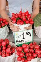 Canada, Montreal, Little Italy, Avenue Casgrain, Jean Talon Public Market, produce vendor, radishes,