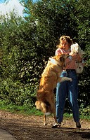 Collie jumping up to woman with dog
