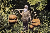 C 1905, Senior man carrying calabash balanced over shoulders through lush greenery, postcard