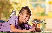 girl playing with two cockatiels / Nymphicus hollandicus