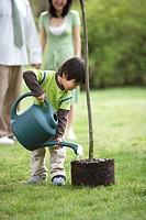 Boy 4-5 watering tree in park