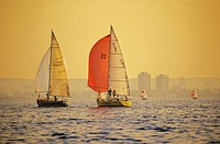 Sailboat race on hamilton harbour, hamilton ontario, canada