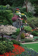 Butchart Gardens, spring flower display on rock garden, Victoria, Vancouver Island, British Columbia, Canada