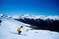 Skier descends whistler, Whistler, British Columbia, Canada