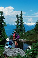 Couple hikes in alpine meadow atop Whistler, Whistler, British Columbia, Canada