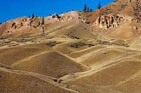 BC Grasslands, Churn Creek area, British Columbia, Canada