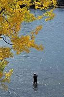 Flyfisherman on the Bulkley river near Quick, British Columbia, Canada