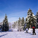 Skiers atop of Grouse Mountain, Coast Mountains, British Columbia, Canada