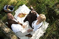 Mature couple having picnic