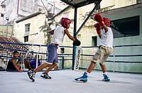 Young Boys Boxing, Rafael Trejo Gym, Old Havana, Cuba