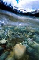 Underwater, Little Yoho River, British Columbia