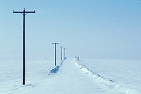 Rural Telephone Poles in the Snow