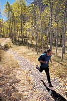 Man Jogging Through Aspen Grove