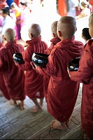 Young Monks with Rice Bowls, Inle Lake, Myanmar Burma
