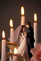 Plastic Bride And Groom Figurines