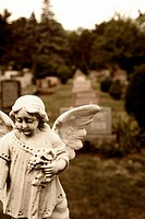 Angel Statue in a Graveyard, St  Catharines, Ontario