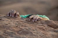 Hands of a rock climber
