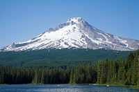 Mt  Hood Seen from Trillium Lake