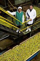 Portrait of mature male and female workers inside apple processing factory