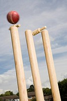 A cricket ball and stump