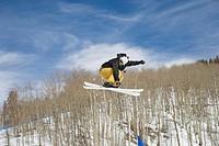Acrobatic Skier
