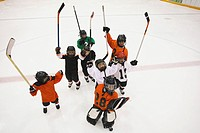 Young Hockey Team