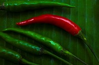red and green pepper, elevated view