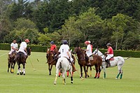 Group of players playing a polo match