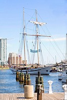 Tall ship moored at a harbor, Inner Harbor, Baltimore, Maryland, USA