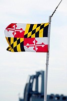 Close-up of a Maryland State flag fluttering, Baltimore, Maryland, USA