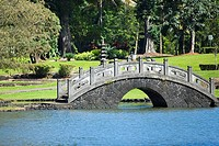 Pond in a park, Liliuokalani Park And Gardens, Hilo, Hawaii Islands, USA