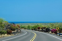 Road passing through a landscape, Honaunau, Kona Coast, Big Island, Hawaii Islands, USA