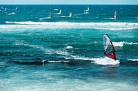 Windsurfing boards in the sea, Hookipa Beach, Maui, Hawaii Islands, USA