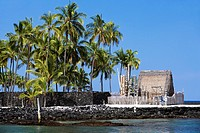 Palm trees in front of a building, Puuhonua O Honaunau National Historical Park, Kona Coast, Big Island, Hawaii Islands, USA