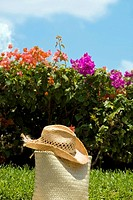 Close-up of a straw bag with a straw hat on grass in a park, Cancun, Mexico
