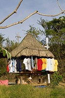 T-shirts hanging on a stall, Jonesville, Roatan, Bay Islands, Honduras