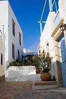 Potted plants in front of buildings, Patmos, Dodecanese Islands, Greece